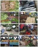 Gizo market