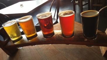 5 bear sampler